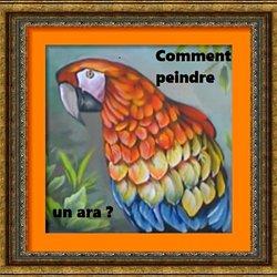 Vidéos Peindre Les Perroquets Pearltrees