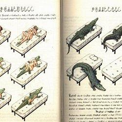 pdf codex seraphinianus